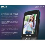 BLU Zoey 2.4 - also works with Kosher sim cards